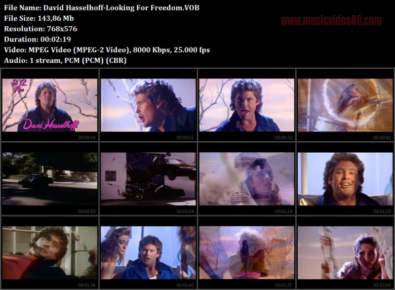 David Hasselhoff  -Looking For Freedom