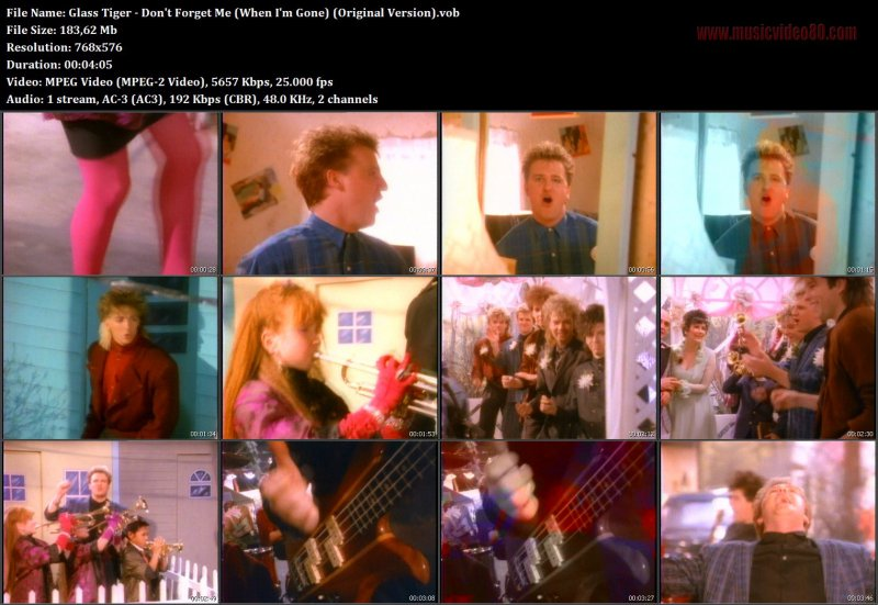 Glass Tiger - Don't Forget Me (When I'm Gone) (Original Version).